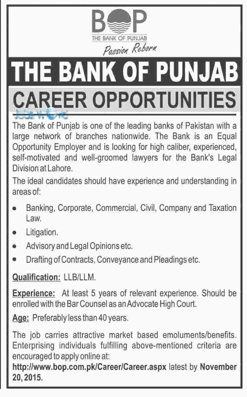 bank of punjab bop jobs opportunity latest advertisement jobsworld
