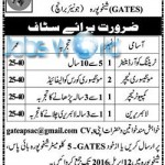 FWO Jobs 2016 Punjab General & Technical Education School System