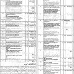 Health Department City District Govt Lahore Jobs 2016