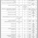 Pak Army Civilian Jobs 2016 June At Command & Staff College